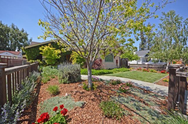 2199 Radio Ave, San Jose, CA 95125 (#ML81702481) :: Brett Jennings Real Estate Experts