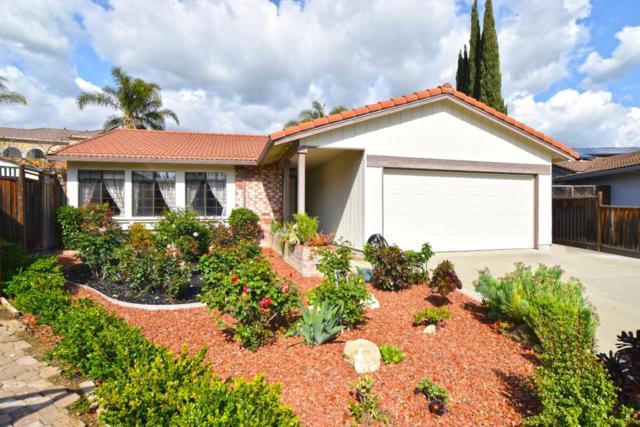 3599 Estate View Ct, San Jose, CA 95148 (#ML81702483) :: Intero Real Estate