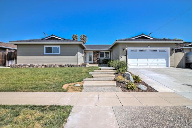 3393 Lynn Oaks Dr, San Jose, CA 95117 (#ML81702521) :: Brett Jennings Real Estate Experts
