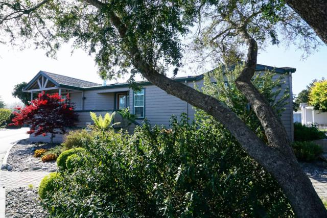 225 Mount Hermon Rd 36, Scotts Valley, CA 95066 (#ML81702674) :: Strock Real Estate