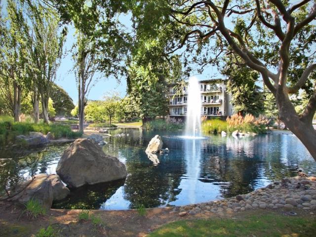 814 N Delaware St 407, San Mateo, CA 94401 (#ML81703064) :: The Goss Real Estate Group, Keller Williams Bay Area Estates