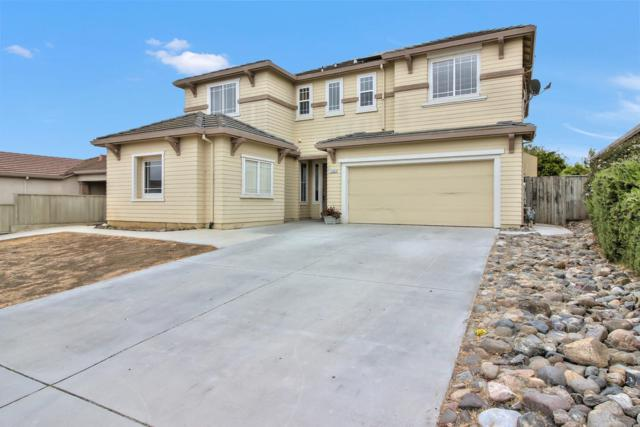 1301 Freedom Dr, Hollister, CA 95023 (#ML81703336) :: Intero Real Estate