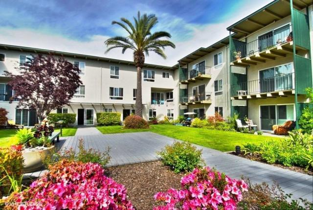 819 N Humboldt St 304, San Mateo, CA 94401 (#ML81703868) :: The Goss Real Estate Group, Keller Williams Bay Area Estates