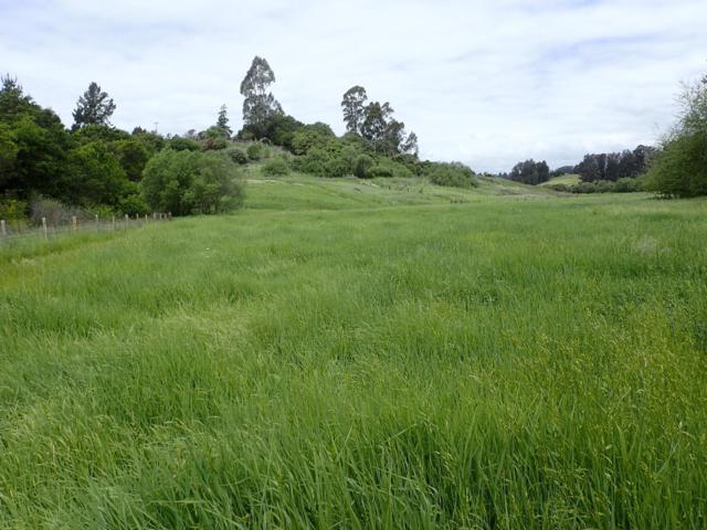 0 Ridge Way, Watsonville, CA 95076 (#ML81704010) :: The Goss Real Estate Group, Keller Williams Bay Area Estates