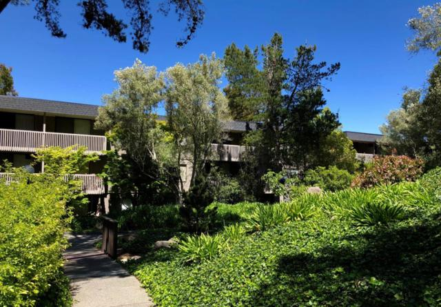 3135 Shelter Creek Ln, San Bruno, CA 94066 (#ML81704174) :: The Gilmartin Group