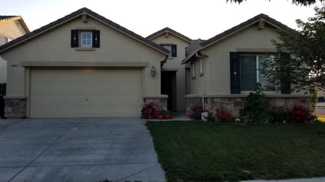 1605 Maidencane Way, Los Banos, CA 93635 (#ML81704751) :: The Goss Real Estate Group, Keller Williams Bay Area Estates