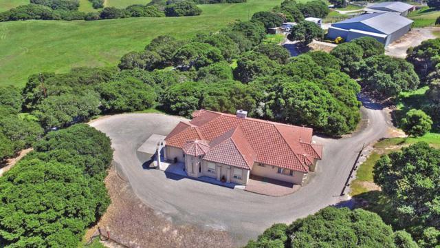 2300 Salinas Rd, San Juan Bautista, CA 95045 (#ML81705139) :: Intero Real Estate