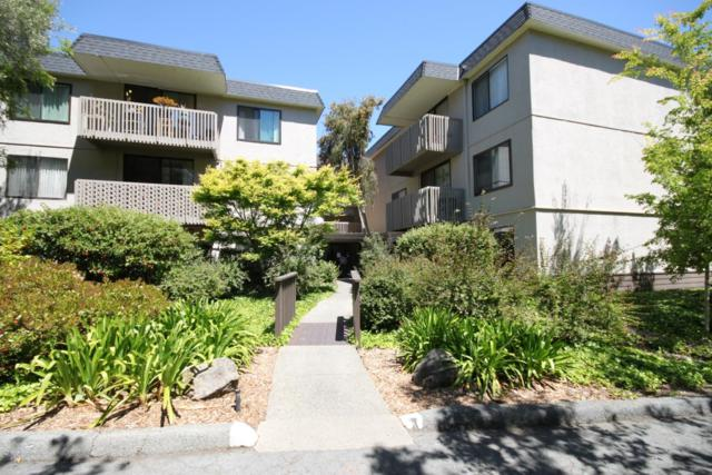 7101 Shelter Creek Ln, San Bruno, CA 94066 (#ML81705280) :: The Gilmartin Group