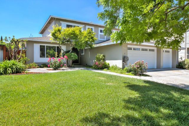 6655 San Anselmo Way, San Jose, CA 95119 (#ML81705881) :: Strock Real Estate