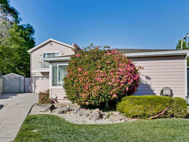 35546 Biscay Pl, Newark, CA 94560 (#ML81705915) :: The Gilmartin Group