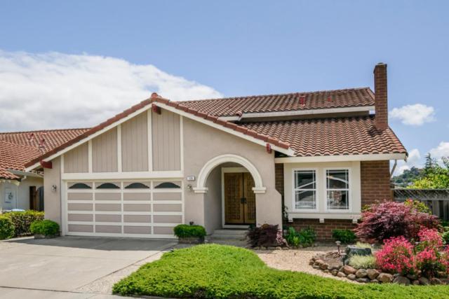 120 Seagate Dr, San Mateo, CA 94403 (#ML81705983) :: The Goss Real Estate Group, Keller Williams Bay Area Estates
