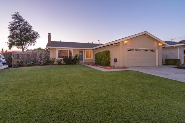 51 Southgate Ct, San Jose, CA 95138 (#ML81706015) :: The Gilmartin Group