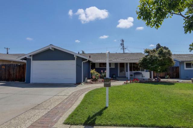 872 Loyalton Dr, Campbell, CA 95008 (#ML81706217) :: The Dale Warfel Real Estate Network
