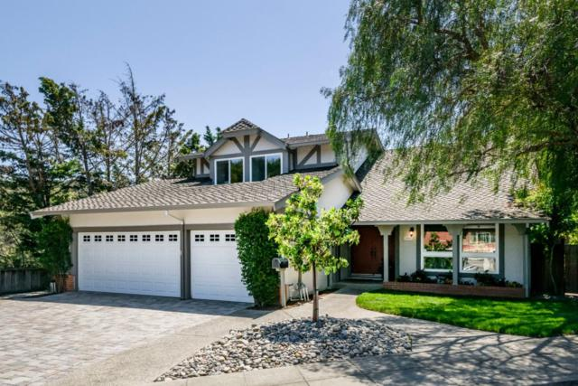 1407 Parkwood Dr, San Mateo, CA 94403 (#ML81706238) :: The Gilmartin Group