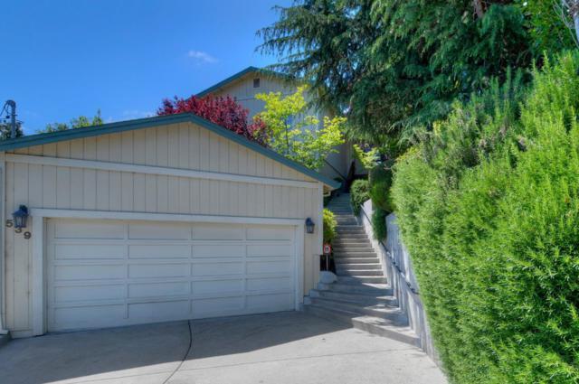 539 Hillside Rd, Redwood City, CA 94062 (#ML81706305) :: The Gilmartin Group