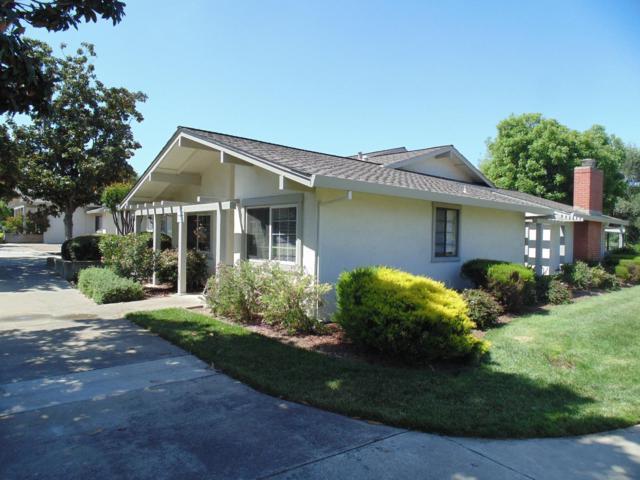 5017 Cribari Vale, San Jose, CA 95135 (#ML81706314) :: The Dale Warfel Real Estate Network