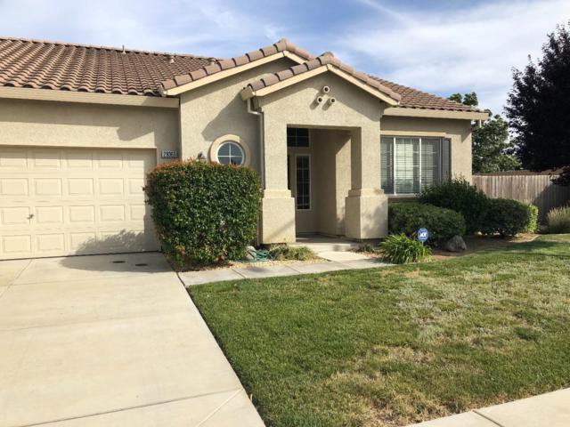 29363 W Centinella Dr, Santa Nella, CA 95322 (#ML81706360) :: The Kulda Real Estate Group