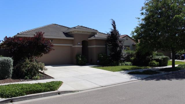 2123 Harborage Way, Oakley, CA 94561 (#ML81706451) :: The Goss Real Estate Group, Keller Williams Bay Area Estates