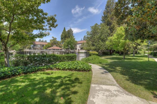 701 San Conrado Ter 7, Sunnyvale, CA 94085 (#ML81706590) :: Julie Davis Sells Homes