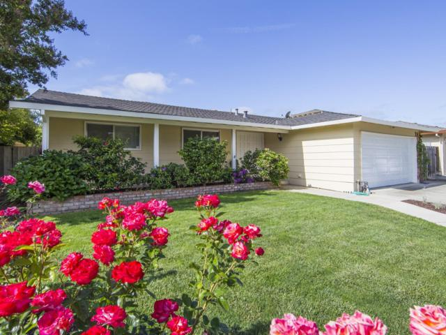 1268 Butterfly Dr, San Jose, CA 95120 (#ML81706662) :: The Dale Warfel Real Estate Network