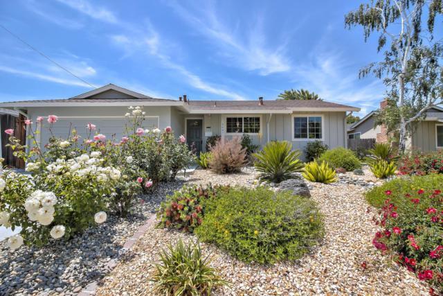 5047 Wayland Ave, San Jose, CA 95118 (#ML81706678) :: The Goss Real Estate Group, Keller Williams Bay Area Estates