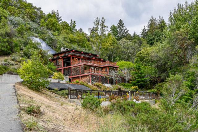 260 N Pippin Ln, Santa Cruz, CA 95065 (#ML81706693) :: The Dale Warfel Real Estate Network