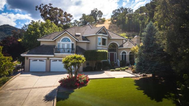 321 Oak Grove Ct, Morgan Hill, CA 95037 (#ML81706705) :: Julie Davis Sells Homes
