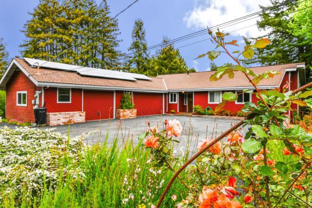 171 Frogsong Way, Corralitos, CA 95076 (#ML81706714) :: The Goss Real Estate Group, Keller Williams Bay Area Estates