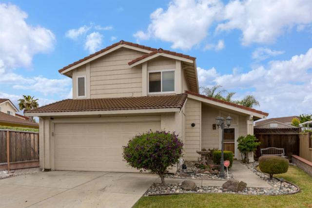 3259 Whiterose Dr, San Jose, CA 95148 (#ML81706725) :: Julie Davis Sells Homes