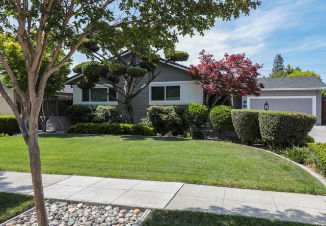 861 Kingfisher Dr, San Jose, CA 95125 (#ML81706738) :: The Goss Real Estate Group, Keller Williams Bay Area Estates
