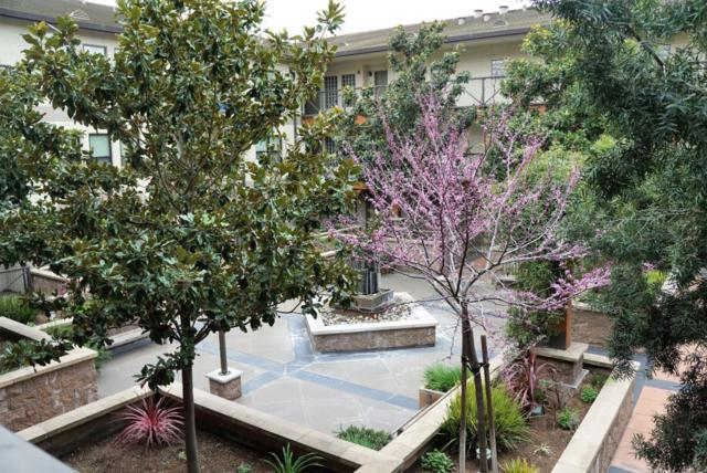 125 Patterson St 213, San Jose, CA 95112 (#ML81706765) :: Strock Real Estate