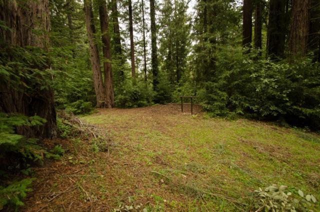 14985 Fern Ave, Boulder Creek, CA 95006 (#ML81706772) :: Strock Real Estate