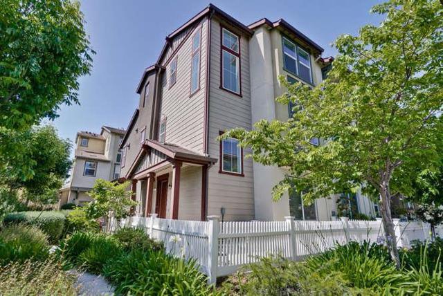 234 Peppermint Tree Ter 5, Sunnyvale, CA 94086 (#ML81706806) :: Julie Davis Sells Homes