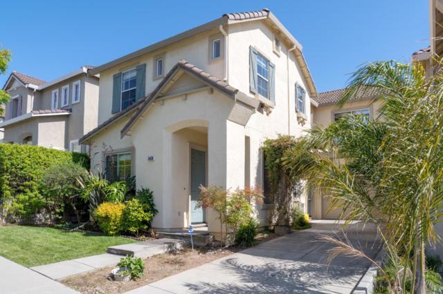 3428 Glenprosen Ct, San Jose, CA 95148 (#ML81706836) :: Astute Realty Inc
