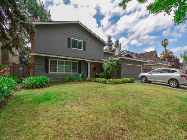 2515 Lodi Ln, San Jose, CA 95124 (#ML81706942) :: The Goss Real Estate Group, Keller Williams Bay Area Estates