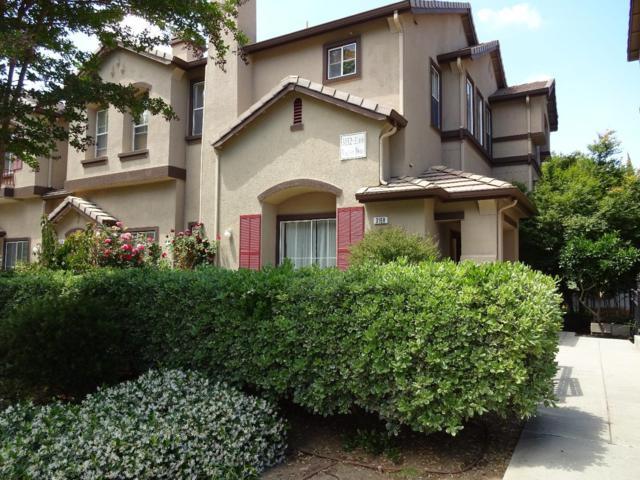 3168 Vinifera Dr, San Jose, CA 95135 (#ML81706950) :: Astute Realty Inc