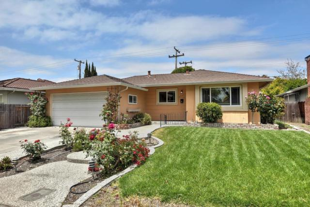 3551 Earl Dr, Santa Clara, CA 95051 (#ML81707030) :: The Dale Warfel Real Estate Network