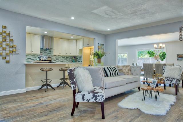 721 San Simeon St, Sunnyvale, CA 94085 (#ML81707097) :: Strock Real Estate