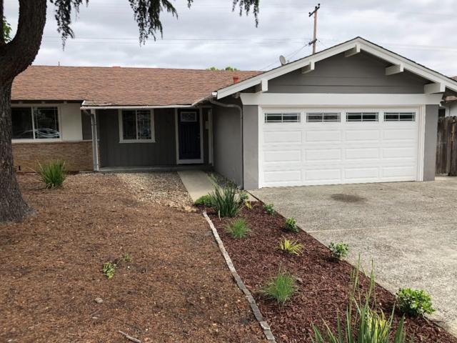 1967 Camden Ave, San Jose, CA 95124 (#ML81707195) :: Strock Real Estate