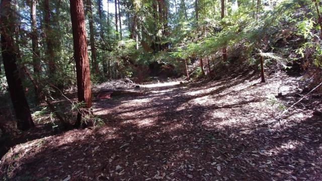 0 Monan Way, Boulder Creek, CA 95006 (#ML81708746) :: The Gilmartin Group