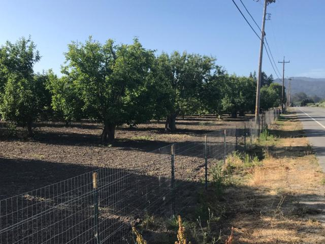 0 Corraltios Rd, Corralitos, CA 95076 (#ML81708862) :: Brett Jennings Real Estate Experts