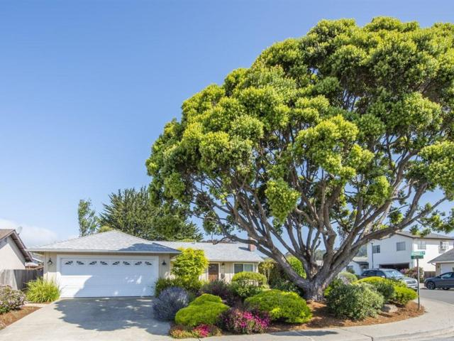 534 Spindrift Way, Half Moon Bay, CA 94019 (#ML81709507) :: The Kulda Real Estate Group