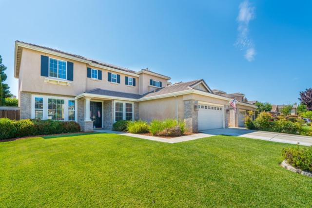 4297 Christopher Michael Ct, Tracy, CA 95377 (#ML81709584) :: von Kaenel Real Estate Group