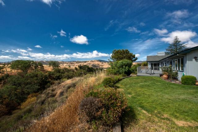 50 Terrys Ct, Hollister, CA 95023 (#ML81709790) :: The Kulda Real Estate Group
