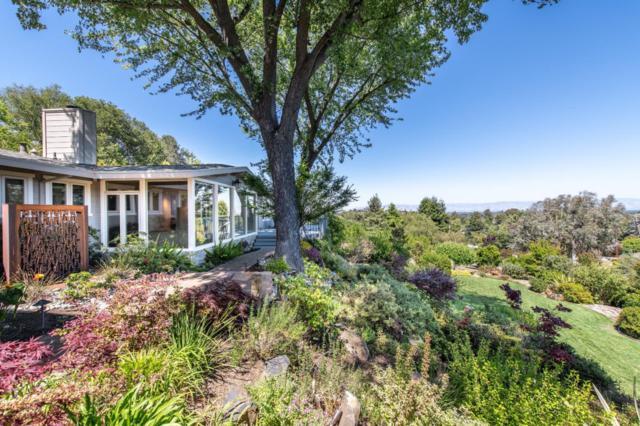 25851 Vinedo Ln, Los Altos Hills, CA 94022 (#ML81709851) :: Astute Realty Inc