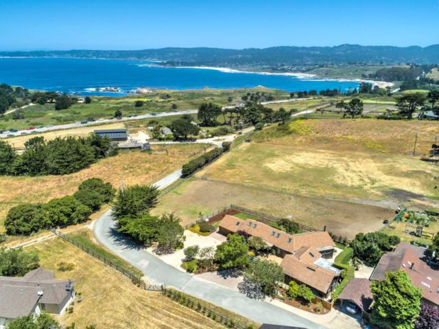 56 Riley Ranch Rd, Carmel, CA 93923 (#ML81710074) :: Julie Davis Sells Homes