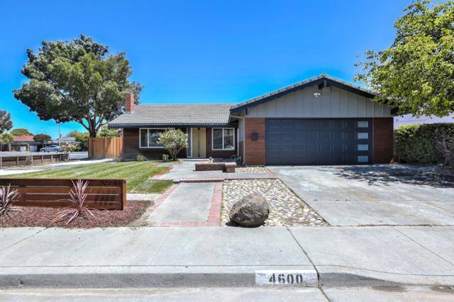 4600 Rochelle Dr, Union City, CA 94587 (#ML81710081) :: Strock Real Estate