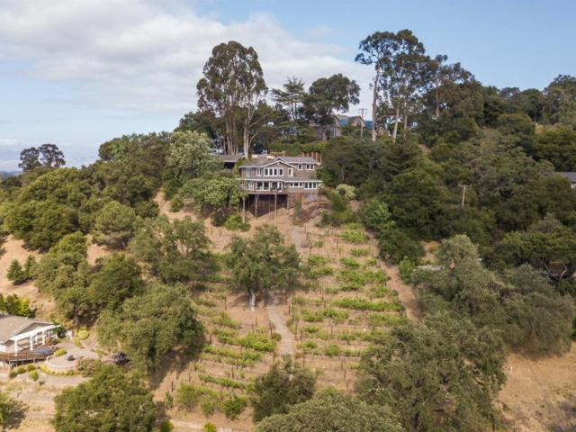13349 La Cresta Dr, Los Altos Hills, CA 94022 (#ML81710225) :: The Kulda Real Estate Group