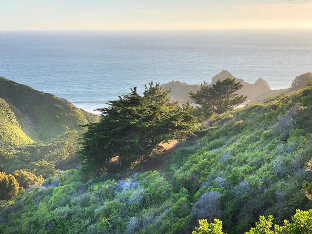 Address Not Disclosed, Big Sur, CA 93920 (#ML81710283) :: The Warfel Gardin Group