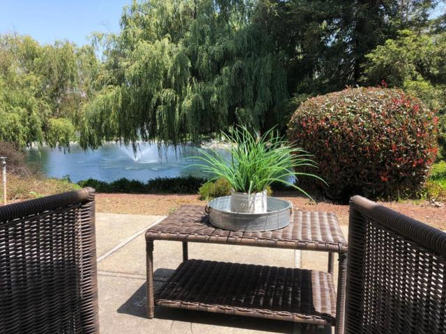 6255 Blauer Ct, San Jose, CA 95135 (#ML81710284) :: The Goss Real Estate Group, Keller Williams Bay Area Estates